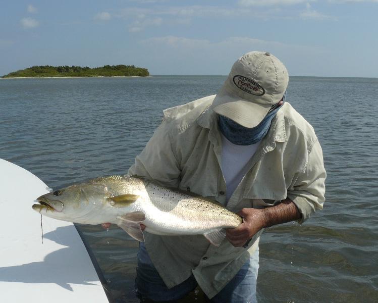 mud-trout2