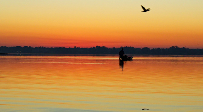 Seven Habits of How to be an Effective Fisherman