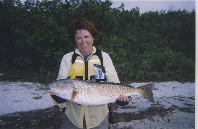 A Thick Redfish