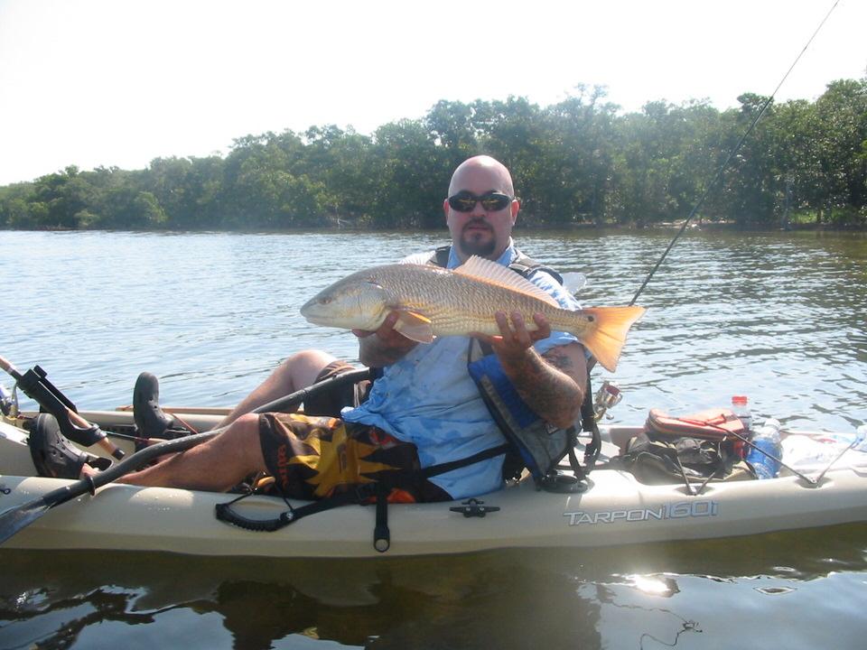 Redfish on a Tarpon