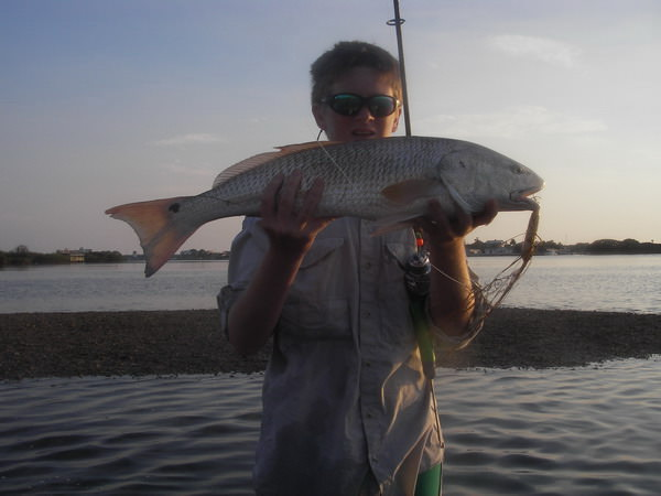 redfish-34 inch